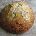 High Gluten flour loaf #1
