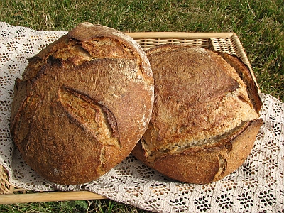... which i feed with rye flour i made a light swedish rye loaf the