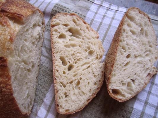 Loaf # 1 crumb