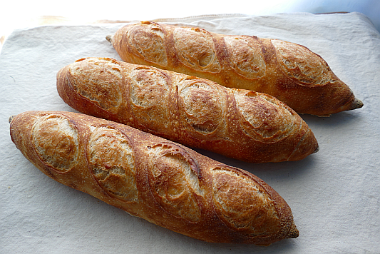 Sourdough Baguettes Bread