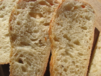 Crumb of Austrian loaf