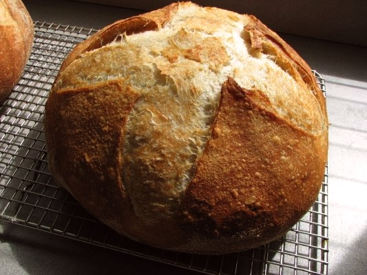 Bread using King Arthur Flour
