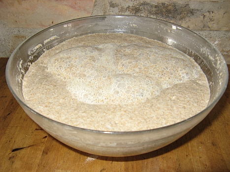 Swedish sourdough starter