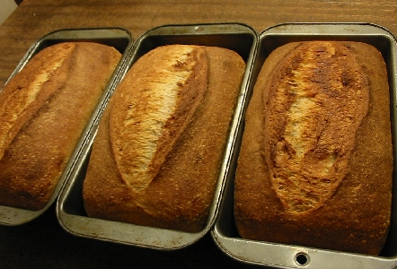 baked loaves