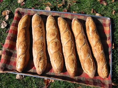 all five baguettes