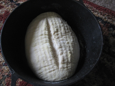 loaf raising in cast iron pan
