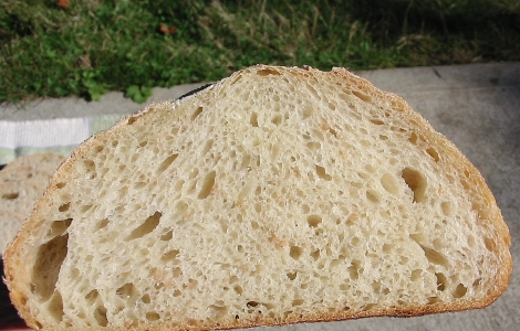 closeup of crumb