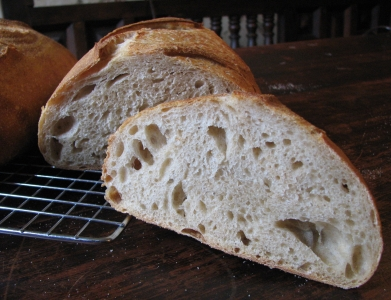wheat white crumb