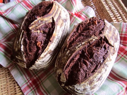 cocoa_rye5