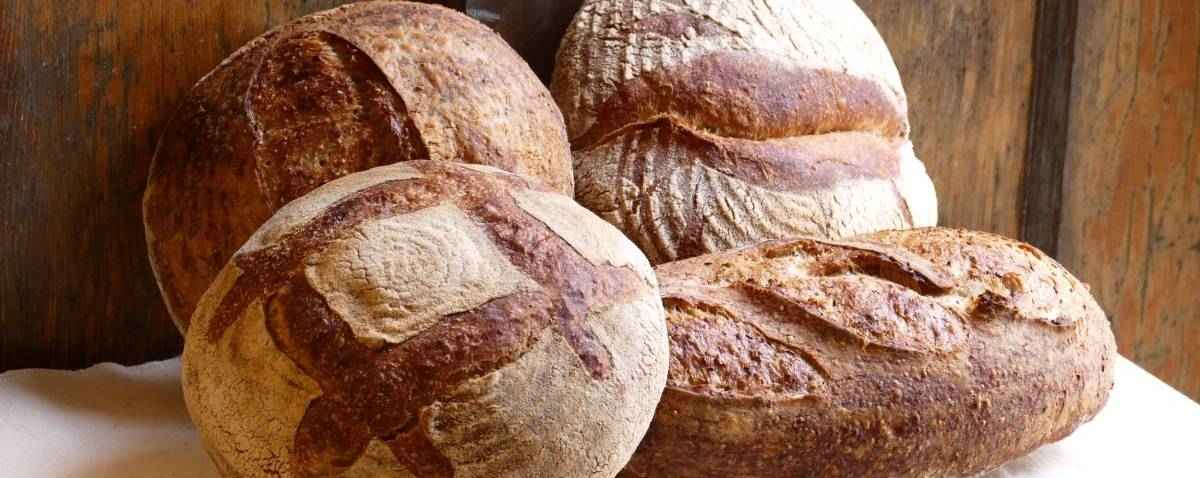 Northwest Sourdough Bread Baking Courses