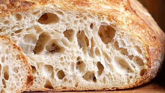 ferment6