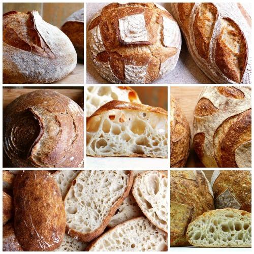 Bake Sourdough Breads!